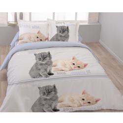 Housse de couette CHAT CATS  200 x 200 +2 Taies Coton 100%